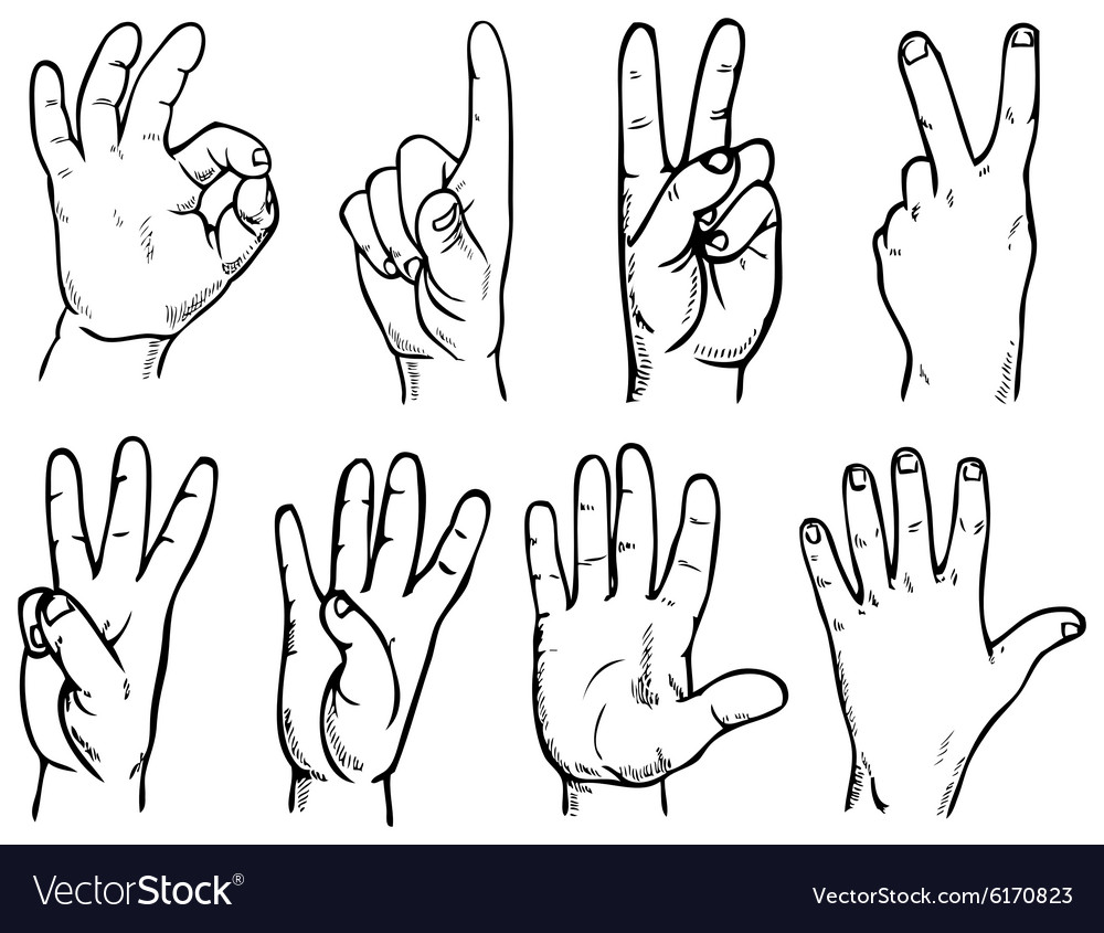 Hand account vector