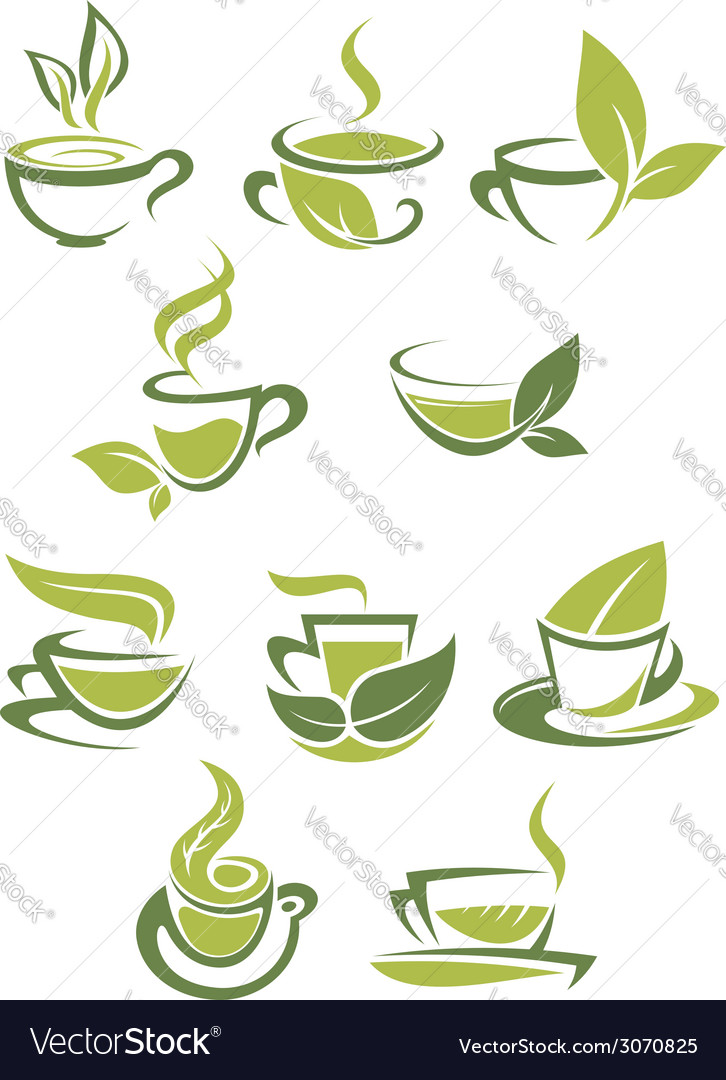 Collection of green or organic tea icons vector