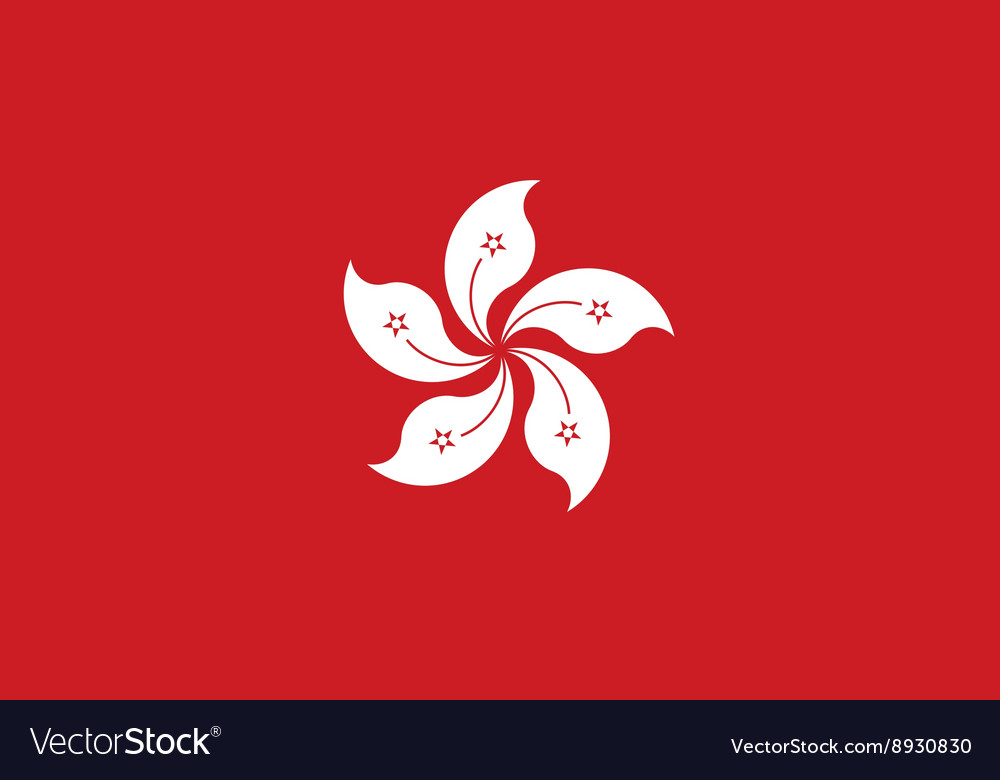 Hong kong flag image vector