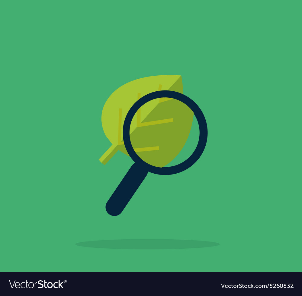 Magnifying glass and leaf education concept vector
