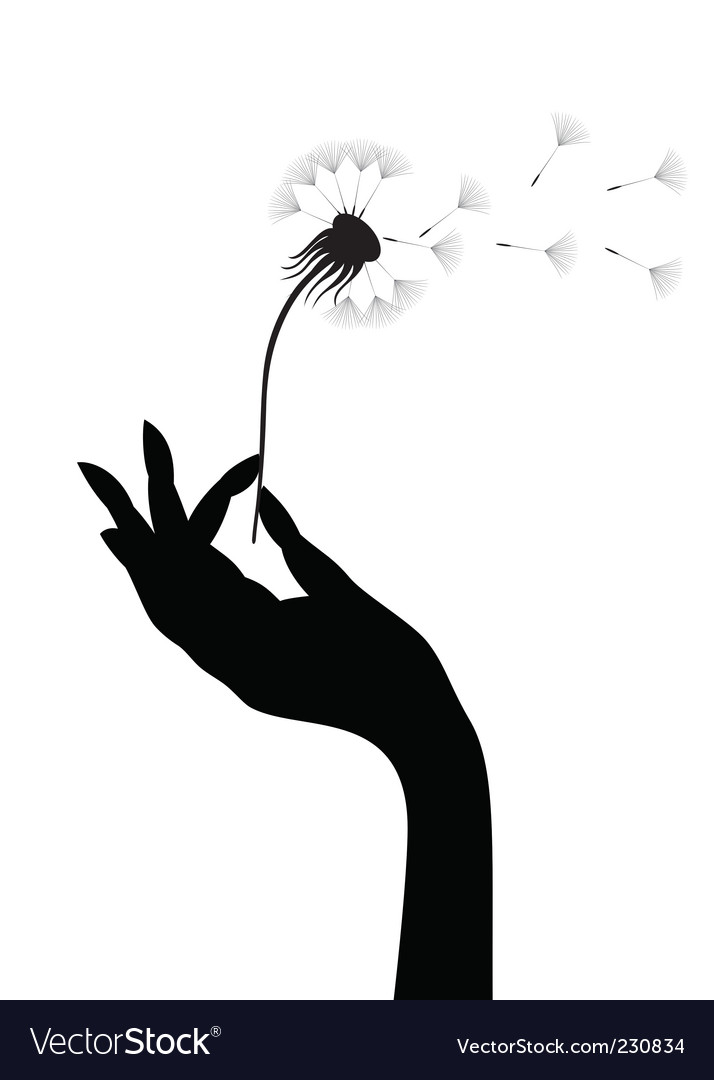 Dandelion in a hand vector