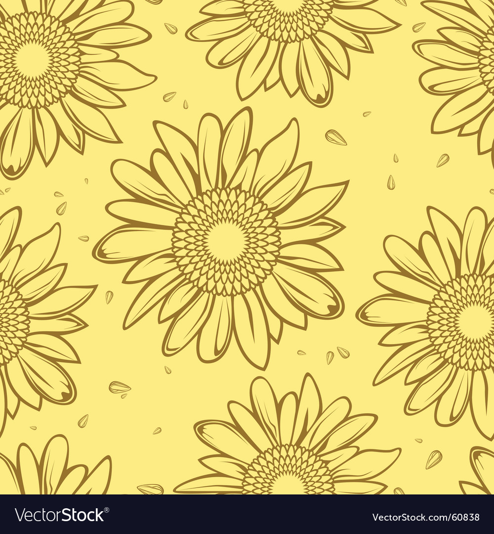 Sunflower seamless vector