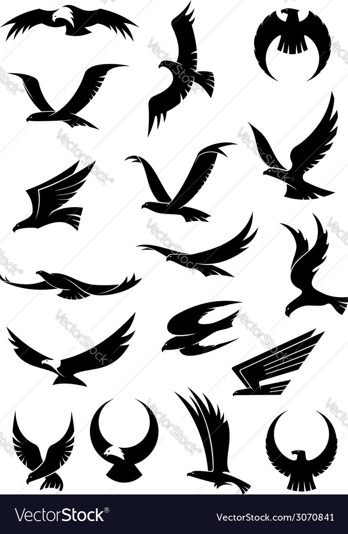 Flying eagle falcon and hawk icons vector