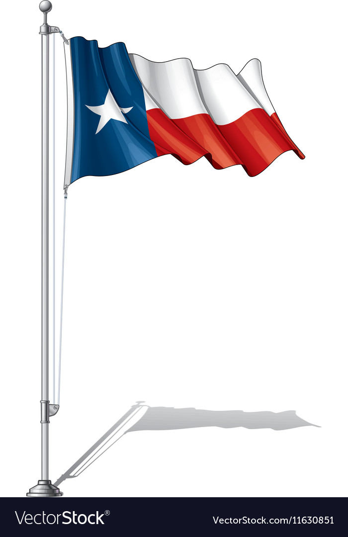 Flag pole texas vector