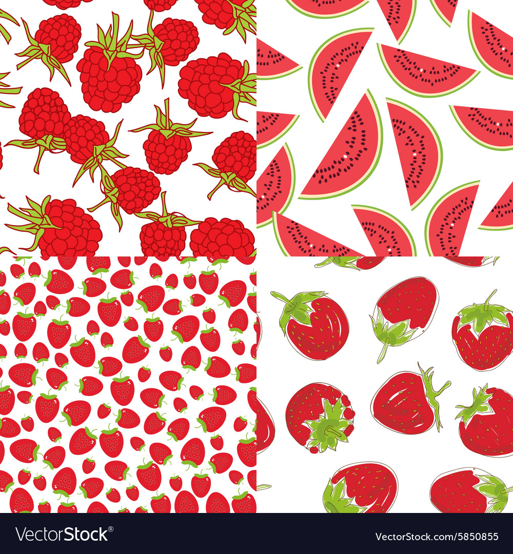 Ripe red raspberry strawberry watermelon set of vector