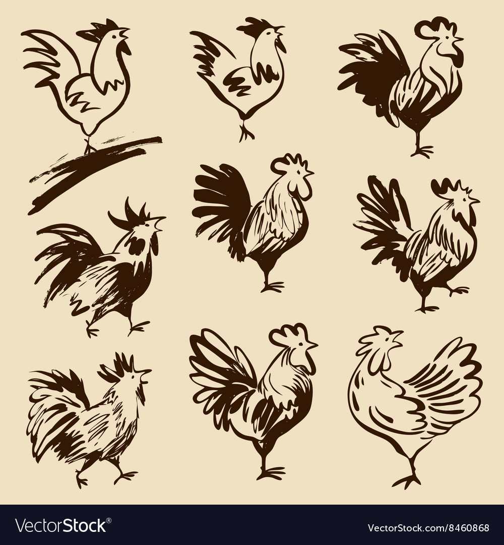 Roosters in different poses silhouettes vector