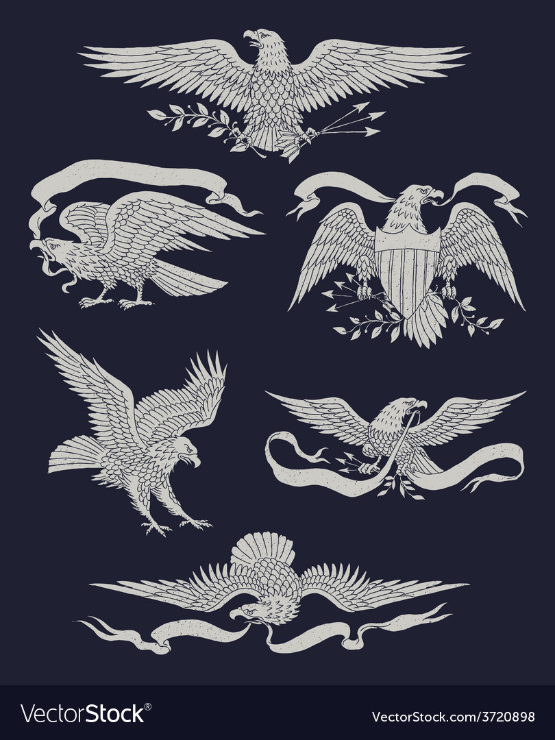 Hand drawn vintage eagle set vector