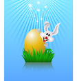 Bunny and easter egg vector image