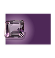 purple amethyst vector image