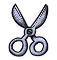 cartoon image of scissors icon shears symbol vector image