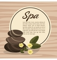poster spa hot stone massage relax with flower vector image
