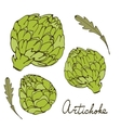 Colorful hand drawn card with artichoke vector
