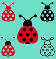 Seven spot ladybird icons vector image