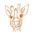 giraffe cub vector image