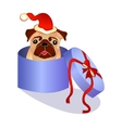 dog in the box - christmas present vector image