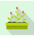 Tulips flowers icon flat style vector image