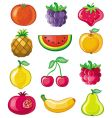 set of juicy fruit vector image