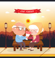 happy old couple vector image