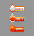 Glossy hot offer icons and buttons vector image