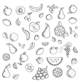 Fruits and berries sketched icons set vector image vector image