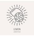 Simple Logo Template Lemon vector image