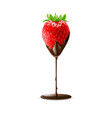 strawberry with leaves in chocolate on white vector image