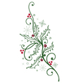 Holly branch with berries vector image