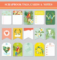 tropical flowers and parrots theme for tags cards vector image vector image