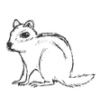 chipmunk vector image