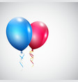 Two balloons vector image