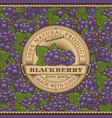 vintage blackberry label on seamless pattern vector image