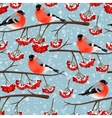 Seamless bullfinch and rowan vector image