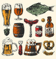 beer food set with mug bottle wheat hop elements vector image