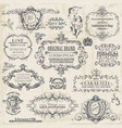 Calligraphic Design Elements vintage set vector image