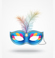carnival masks with feathers vector image