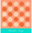 set of mandala design circle ornament collection vector image