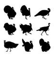 turkey silhouette set vector image