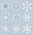 Crystal snowflakes vector image