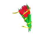 Red tulips with yellow ribbon are on white vector image vector image