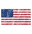 the flag usa vector image