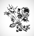 Roses vintage isolated vector image vector image