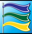 The Flag Banner vector image
