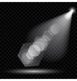Spotlights Illumination vector image