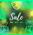 sale background discount card with tropic vector image