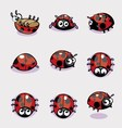 Set of Lady Bug vector image