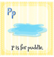 Puddle vector image