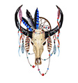 Bull Skull Feathers4 vector image