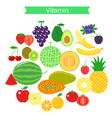fruit icon set vector image