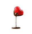 strawberry in chocolate dipping valentine day vector image
