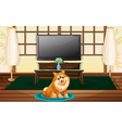 A cute dog inside the house vector image vector image